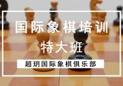 国际象棋培训特大班