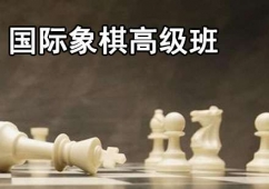 国际象棋高级培训班