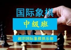 国际象棋中级培训班