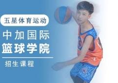 成都中加国际篮球学院招生课程