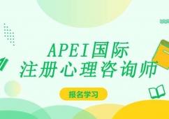 APEI国际注册心理咨询师课程