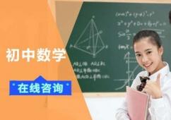 初中数学培训班