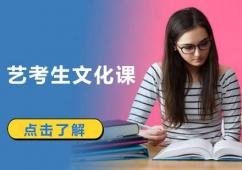 成都艺考生文化课辅导班