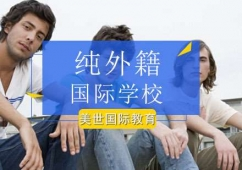北京纯外籍国际学校